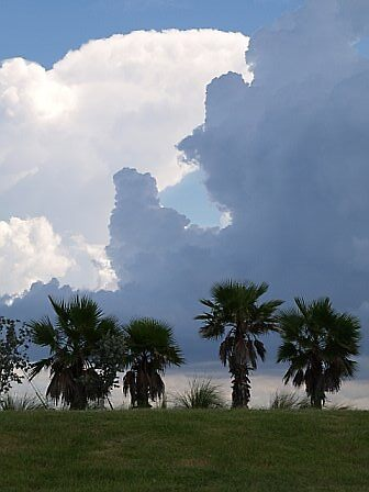 Florida storm by Tiaralynn