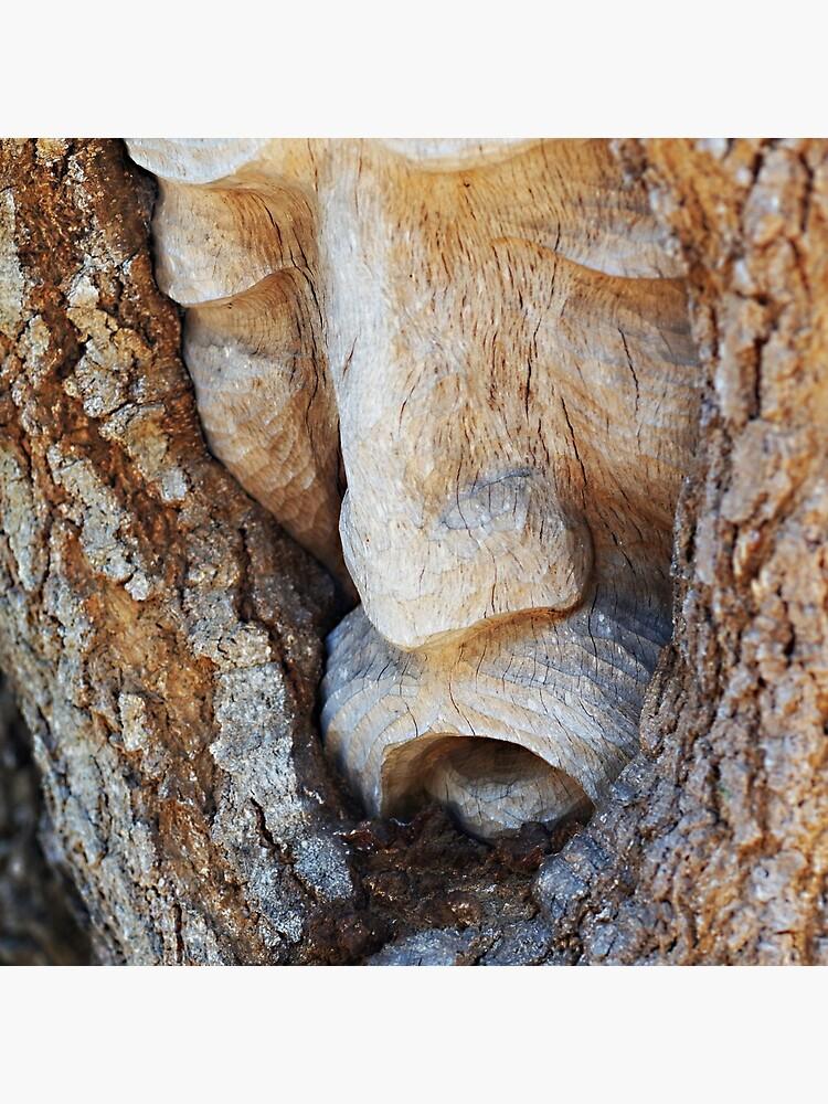 Tree Spirit - Magnolia Manor  by jenseye