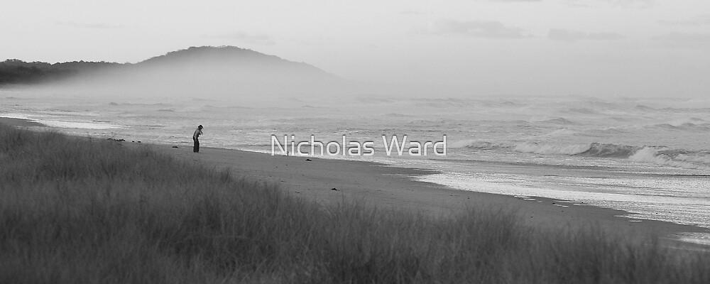 Fern Beach III  by Nicholas Ward