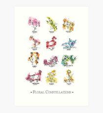 Floral Constellations - Chromatic Art Print