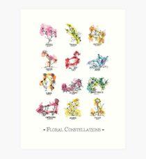 Floral Constellations - Chromatisch Kunstdruck
