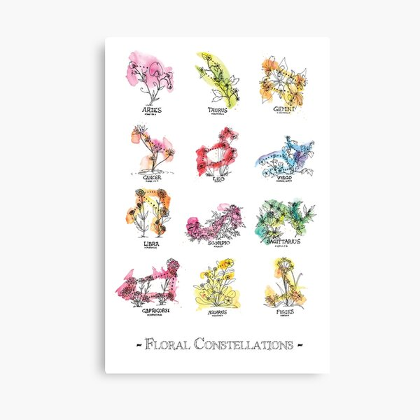 Floral Constellations - Chromatic Canvas Print
