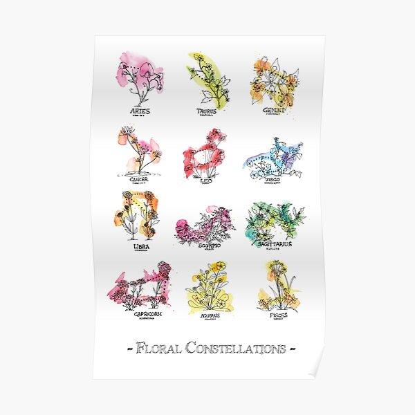 Constellations florales - Chromatique Poster