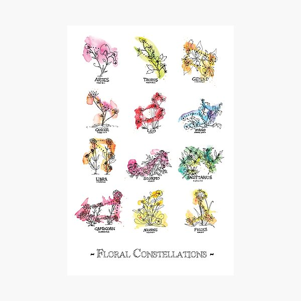 Floral Constellations - Chromatic Photographic Print