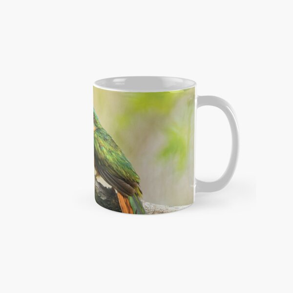 Rufous-tailed Jacamar Classic Mug