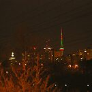 Toronto Cn Tower at Christmas by Larry Llewellyn