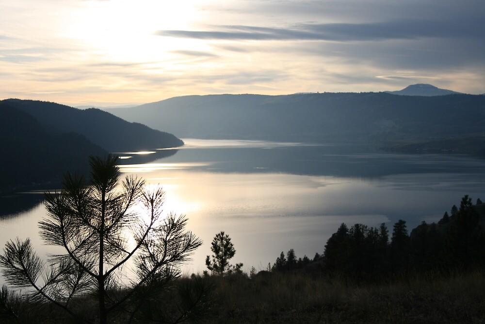 Kalamalka Lake from Kal. Lake Provincial Park. by SpringLupin