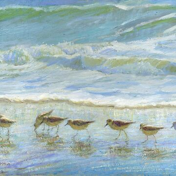 Shorebirds, A Day at the Beach [Sandpipers] by Missman