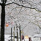 Snow in New York City  by Alberto  DeJesus