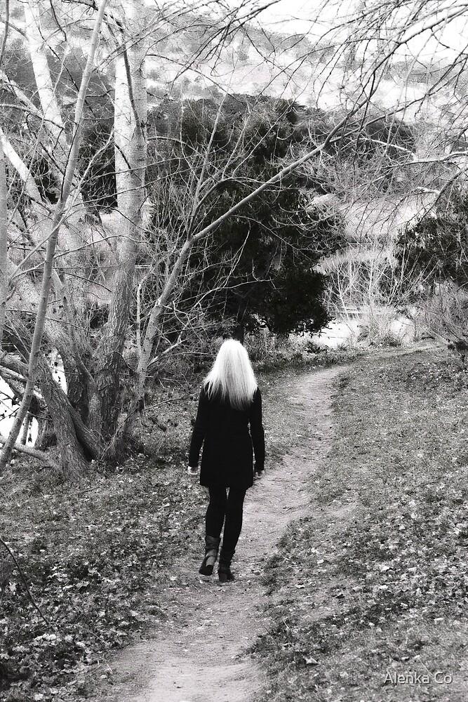 the paths we take by Alenka Co