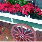 Stopover at Gisborne Florist - Vic. Aust. by EdsMum