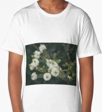 Angophora hispida Long T-Shirt