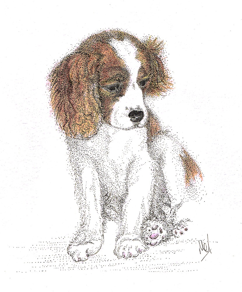 King Charles Puppy by Melf