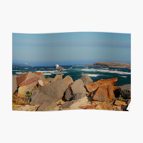 Blacksmiths Breakwall NSW Poster