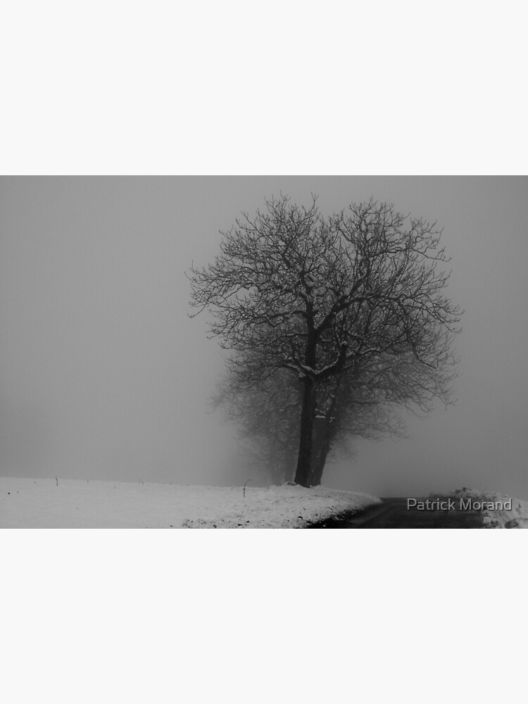 Snow and mist by patmo
