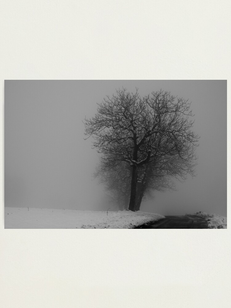 Alternate view of Snow and mist Photographic Print