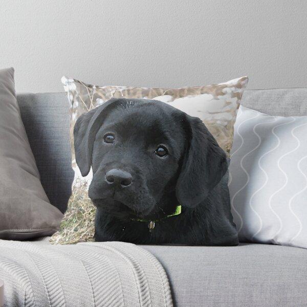 Awaiting Spring - Black Labrador Puppy Throw Pillow