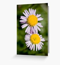 A Real Wild Flower Greeting Card