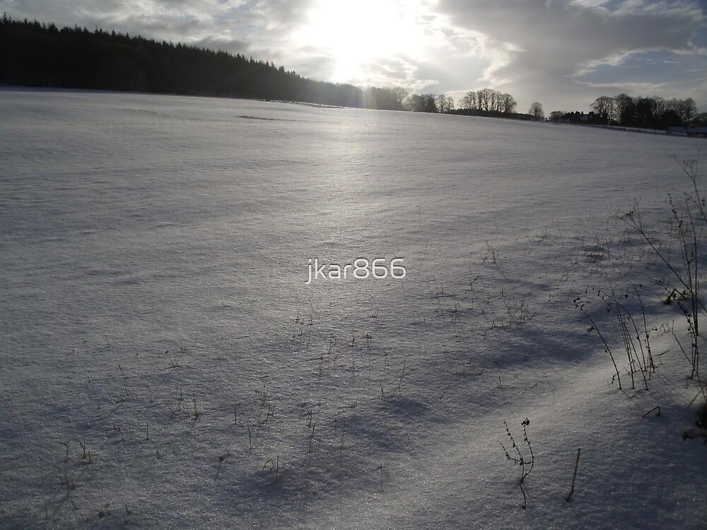 Virgin Snow by jkar866