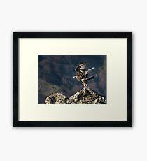 Golden eagle Take-off Framed Print