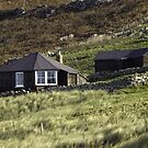 Home on the hill by Steve plowman