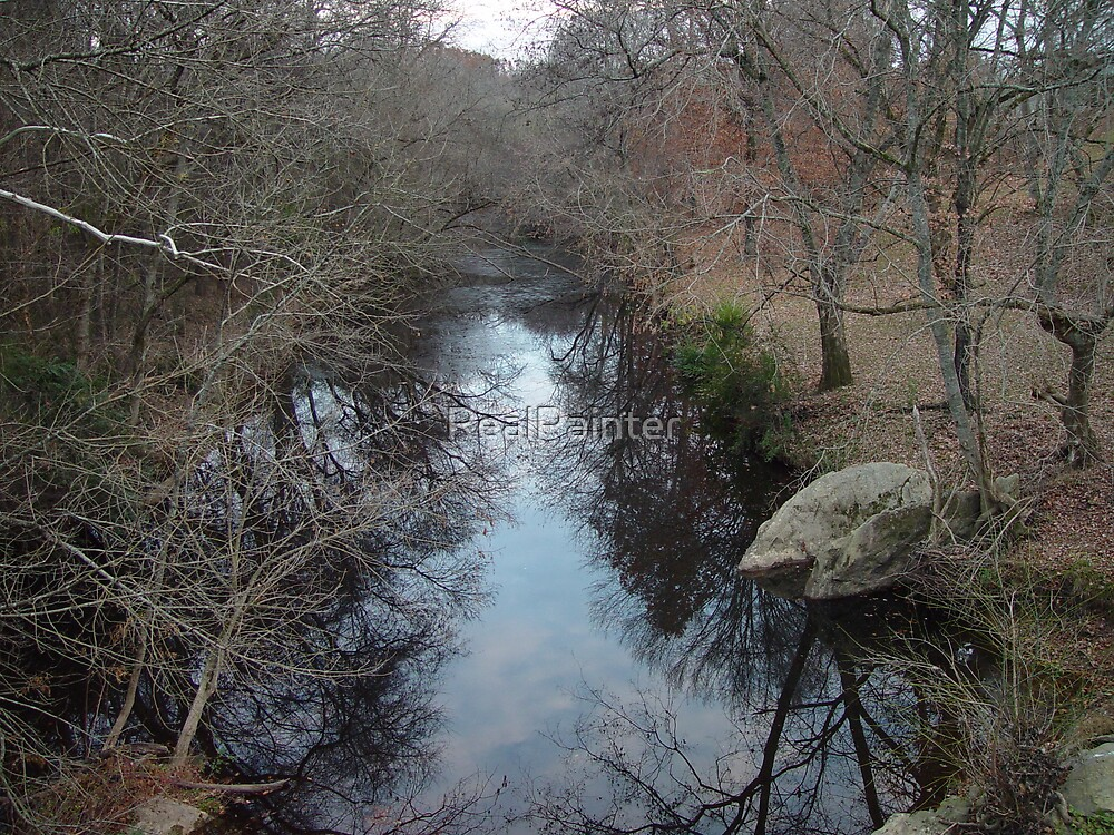 Reflections in the water NC cold cold day Streams and waters by RealPainter