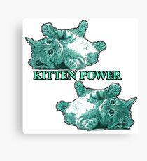 Kitten Power - Turqoise Canvas Print