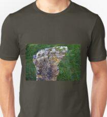 Odd Shaped Gravestone...... Unisex T-Shirt