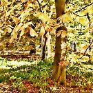 Autumn Watercolour by Ann Garrett
