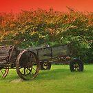 Farm Antique by Gene Cyr