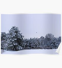 A wintry morning by the pond Poster