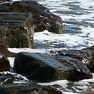 On The Rocks by Trevor Kersley