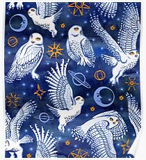 Winter Snow Owl  Poster