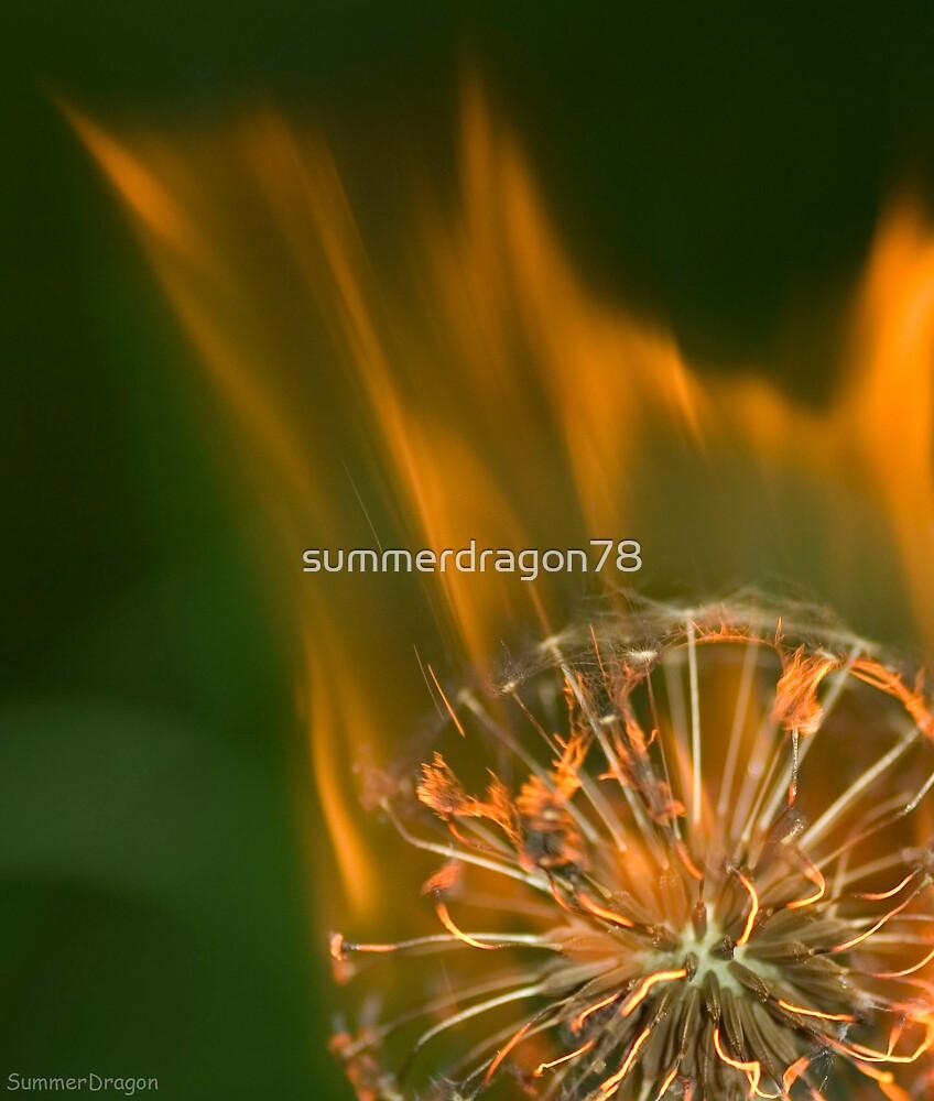 Burning by summerdragon78