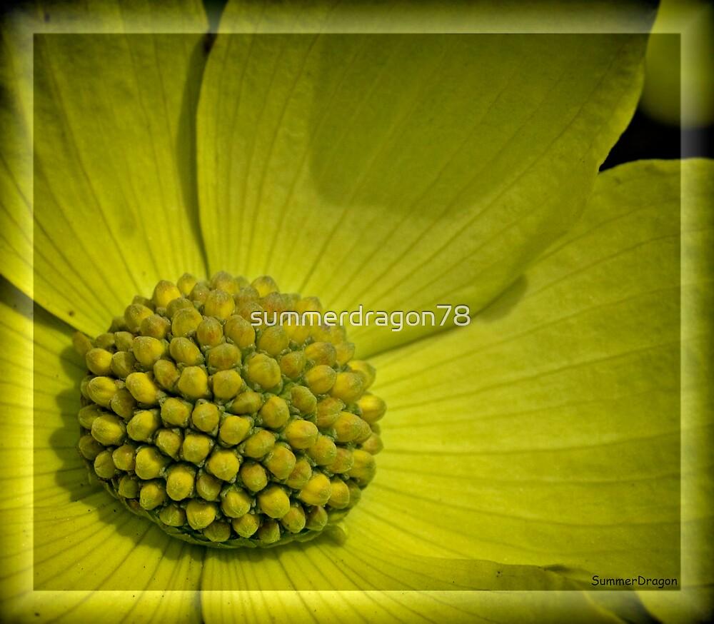 Yellow by summerdragon78