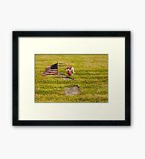 Memorial Flag 3 Framed Print