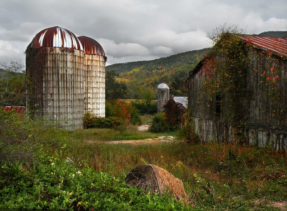 Cherokee Barn and Silos by Gary Pope