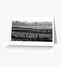 Llanfairfechan Horizon Greeting Card