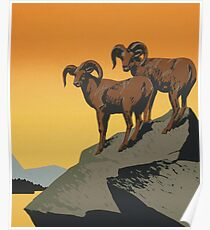 Mountain Goats Poster