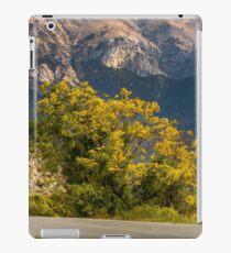 Autumn tree/France iPad Case/Skin