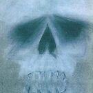 Skull by Caroline Munday
