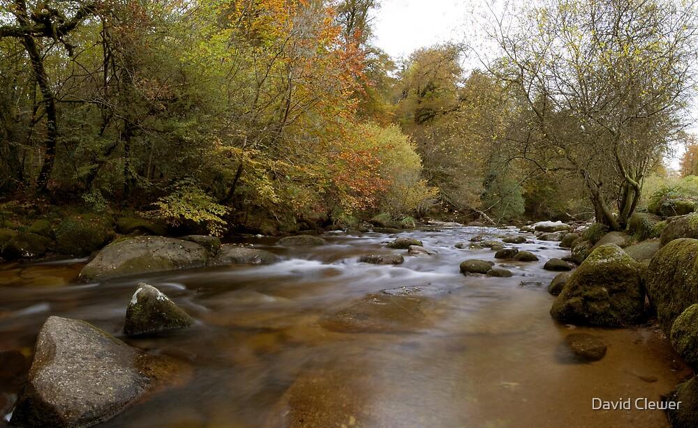River Dart, on Dartmoor by David Clewer