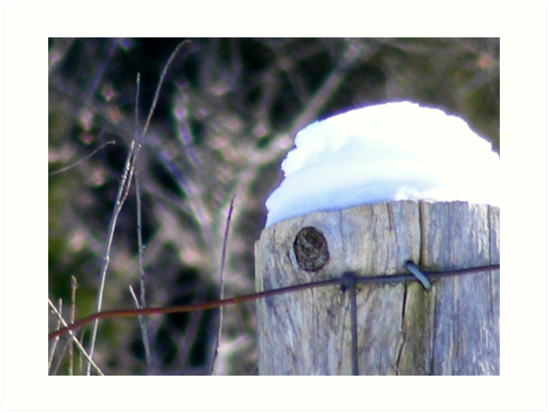 Winter's Cap. by Paul Rees-Jones