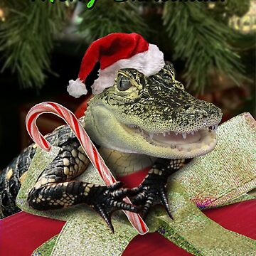 Merry Christmas Alligator  by jkartlife