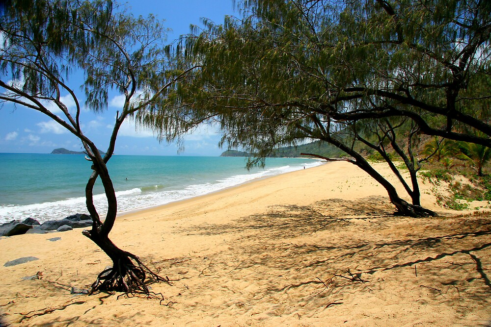 Nth Queensland Coast II by Dave Law