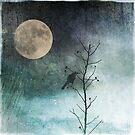 Black Crow Watching by anartfulsoul