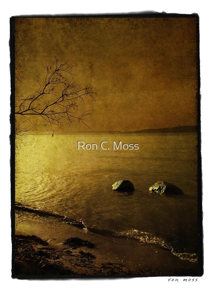 Rock Tide by Ron C. Moss