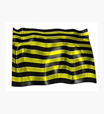 Love black and yellow stripes Photographic Print