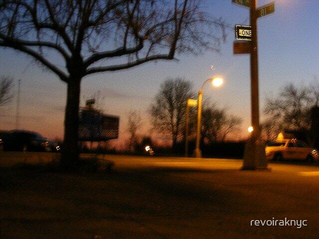 cart sundown by revoiraknyc