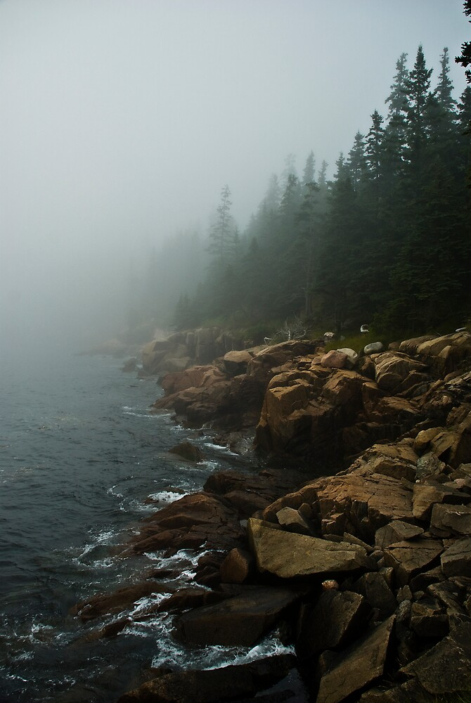 Forest, Rocks, Fog and Ocean in Acadia National Park, Maine by MarkEmmerson